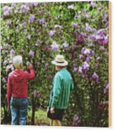 In The Lilac Garden Wood Print