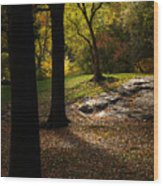 In The Magical Light Wood Print