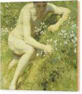 In The Meadow Wood Print by Henry Scott Tuke