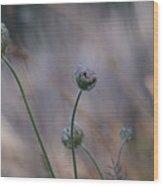 In The Stillness Wood Print