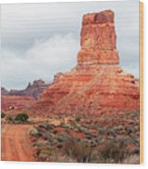 In The Valley Of The Gods Wood Print