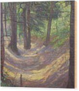 in the Vienna Woods Wood Print