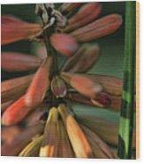 In The Weeds Wood Print