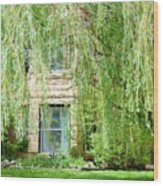 In The Weeping Willows Wood Print