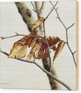In The Winter Breeze Wood Print