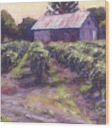 In Wine Country Wood Print by Michael Camp