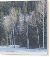 In Winter Wood Print