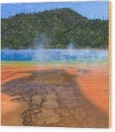 In Yellowstone Wood Print