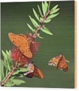 Incoming Wood Print