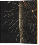 Independance IIi Wood Print