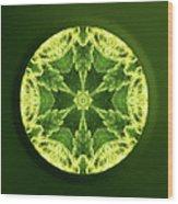 Independence  Wood Print