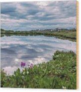 Independence  Pass Pond Wood Print