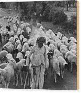 India: Shepherd, 1966 Wood Print