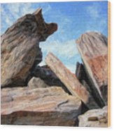 Indian Canyon Rocks Wood Print