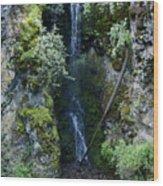 Indian Canyon Waterfall Wood Print