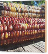 Indian Corn On The Cob Wood Print