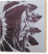 Indian Feathers Wood Print