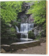 Indian Ladder Falls Wood Print