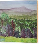 Pete Gay Mountain, Indian Lake Overlook Panorama 1 Wood Print