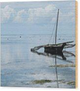 Indian Ocean At Lowtide Wood Print