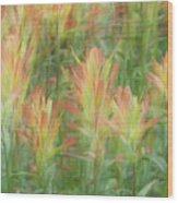 Indian Paint Brush Blurr  Wood Print