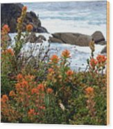 Indian Paintbrush At Point Lobos Wood Print