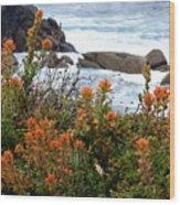 Indian Paintbrush At Point Lobos Wood Print