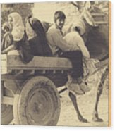 Indian People In Camel Cart- Sepia Wood Print