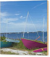 Indian River Lagoon On The Easr Coast Of Florida Wood Print