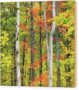 Indian Summer Wood Print
