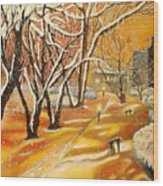 Indian Summer Wish Wood Print by Milagros Palmieri