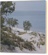 Indiana Dunes State Park Provides Wood Print