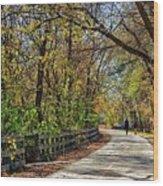 Indiana Monon Trail Wood Print