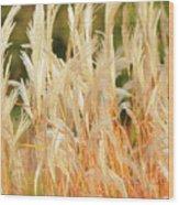 Indiangrass Wood Print