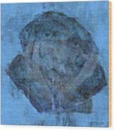 Indistincint Blues Wood Print