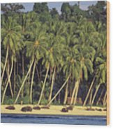 Indonesian Beach Wood Print