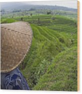 Indonesian Rice Farmer Wood Print