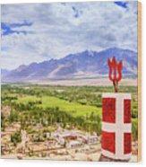 Indus Valley Wood Print