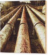 Industrial Hydro Architecture Wood Print