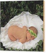 Newborn Infant Lying In Ivy Wood Print