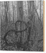 Infinity Vine  Wood Print