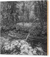 Infra Creek  Wood Print