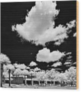Infrared Indian River State College Hendry Campus #1 Wood Print