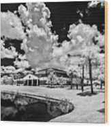 Infrared Indian River State College Hendry Campus #11 Wood Print