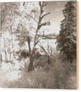 Infrared Landscape Wood Print