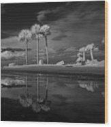 Infrared Palms Wood Print
