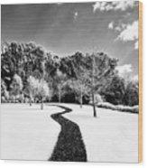 Infrared Parkland Wood Print