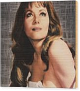 Ingrid Pitt, Vintage Actress Wood Print