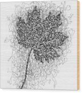 Ink Drawing Of Maple Leaf Wood Print