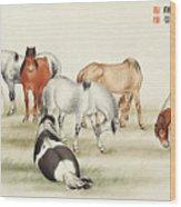 Ink Painting Stud Of Horses Wood Print